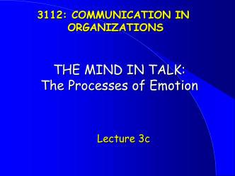 THE MIND IN TALK: The Processes of Cognition and Emotion