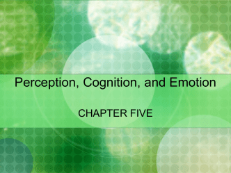 Perception, Cognition, and Emotion