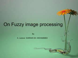 On Fuzzy image processing