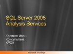 SQL Server 2008 Analysis Services