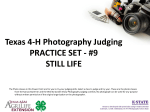 Texas 4-H Photography Judging PRACTICE SET