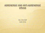 Adrenergic And Anti-adrenergic Drugs – Philadelphia