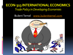 ECON-313 INTERNATIONAL ECONOMICS Trade Policy in