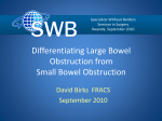 Small Bowel Obstruction - Specialists Without Borders