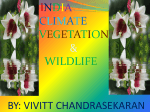climate,vegetation and wildlife of india