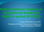 Vietnam National Programme on Occupational Safety and