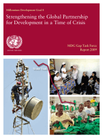 217.MDG Gap Task Force Report 2009