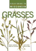 175.Field Guide to Wisconsin Grasses