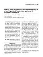 A study of the antigenicity and immunogenicity of a new hepatitis B vaccine using a panel of monoclonal antibodies