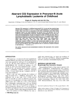 Aberrant CD2 expression in precursor-B acute lymphoblastic leukemia of childhood