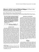 Absence of the lateral philtral ridges A clue to the structural basis of the philtrum