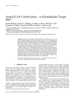 Acetyl-CoA Carboxylase-a Graminicide Target Site