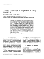 Aerobic Metabolism of Flupropacil in Sandy Loam Soil