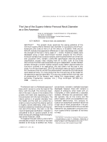 The use of the supero-inferior femoral neck diameter as a sex assessor