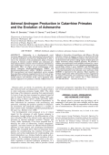 Adrenal androgen production in catarrhine primates and the evolution of adrenarche.