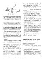 Ammoniumyl Salt-Induced Diels-Alder Reaction of KetenesЧControl of [2 + 2] vs. [4 + 2] Selectivity