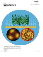 An Approach To Prepare Membrane Proteins for Single-Molecule Imaging.