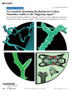 An Atomistic Branching Mechanism for Carbon Nanotubes  Sulfur as the Triggering Agent.