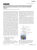 An Environmental DNA-Derived TypeII Polyketide Biosynthetic Pathway Encodes the Biosynthesis of the Pentacyclic Polyketide Erdacin.