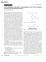 An Examination of the Role of Autocatalytic Cycles in the Chemistry of Proposed Primordial Reactions.