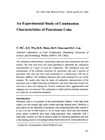 An Experimental Study of Combustion Characteristics of Petroleum Coke.