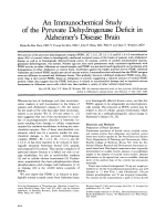 An immunochemical study of the pyruvate dehydrogenase deficit in Alzheimer's disease brain.