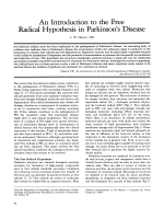An introduction to the free radical hypothesis in Parkinson's disease.