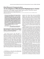 An investigation of mitochondrial haplogroups in autism.