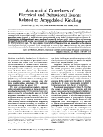 Anatomical correlates of electrical and behavioral events related to amygdaloid kindling.
