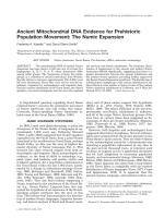 Ancient mitochondrial DNA evidence for prehistoric population movement  The numic expansion.