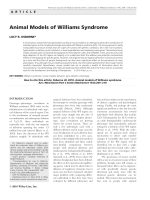 Animal models of Williams syndrome.