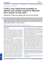 APdCl2Цionic liquid brush assembly  an efficient and reusable catalyst for MizorokiЦHeck reaction in neat water.