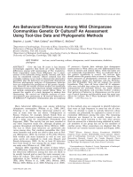 Are behavioral differences among wild chimpanzee communities genetic or cultural An assessment using tool-use data and phylogenetic methods.