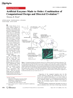 Artificial Enzymes Made to Order  Combination of Computational Design and Directed Evolution.