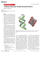 Artificial Molecular Double-Stranded Helices.