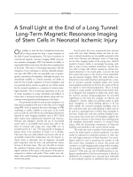 ASmall Light at the end of a long tunnel  Long-term magnetic resonance imaging of stem cells in neonatal ischemic injury.