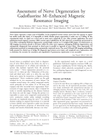 Assessment of nerve degeneration by gadofluorine MЦenhanced magnetic resonance imaging.
