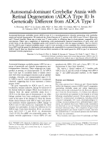 Autosomal-dominant cerebellar ataxia with retinal degeneration (ADCA type II) is genetically different from ADCA type I.