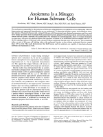 Axolemma is a mitogen for human Schwann cells.