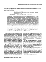 Basicranial anatomy of Plio-Pleistocene hominids from East and South Africa.