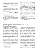 Biologically Active Linear Metabolites of Arachidonic AcidЧThe First Endogenous Ligand of the Cannabinoid Receptor.