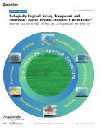 Biologically Inspired  Strong  Transparent  and Functional Layered OrganicЦInorganic Hybrid Films.