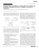 Biomimetic Photocycloaddition of 3-Hydroxyflavones  Synthesis and Evaluation of Rocaglate Derivatives as Inhibitors of Eukaryotic Translation.