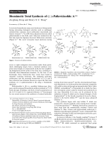 Biomimetic Total Synthesis of (▒)-PallavicinolideA.