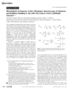 Biosynthesis of Isoprene Units  Mssbauer Spectroscopy of Substrate and Inhibitor Binding to the [4Fe-4S] Cluster of the LytBIspH Enzyme.