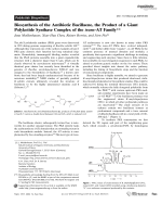Biosynthesis of the Antibiotic Bacillaene  the Product of a Giant Polyketide Synthase Complex of the trans-AT Family.