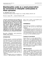 Bis(tributyltin) oxide as a wood preservative  Its conversion to tributyltin carboxylates in Pinus sylvestris.