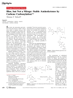 Blue  but Not a Mirage  Stable Aminoketenes by Carbene Carbonylation.