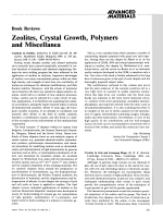 Book Review  Zeolites  Crystal Growth  Polymers and Miscellanea  Catalysis on Zeolites. Edited by D. Kall and Kh. M