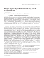 Bilateral asymmetry of the humerus during growth and development.